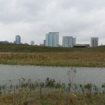 Northerly Island Project Photo 2